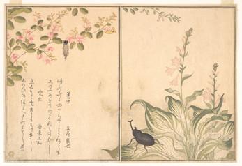 Лучшие цитаты мастера японской поэзии Ёсы Бусона (与謝蕪村)