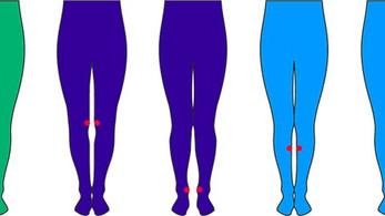 Как определить идеальные ноги?