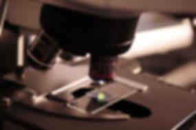 microscope-385364.jpg