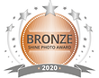 SHINE-Award-BRONZE.png