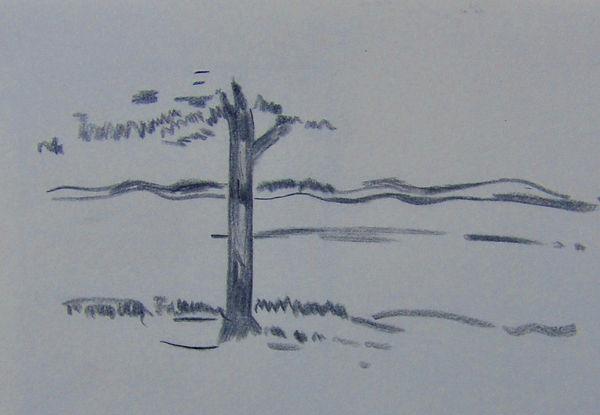 TreeHR2.jpeg