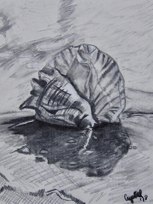 Shell-spiky, charcoal