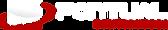 Logo-Pontual.png