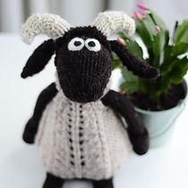 Wee_Blackface_Sheep