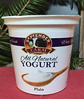 Plain Yogurt.jpg