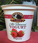 Raspberry Yougurt.jpg