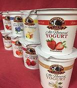 Yogurt photo.jpg