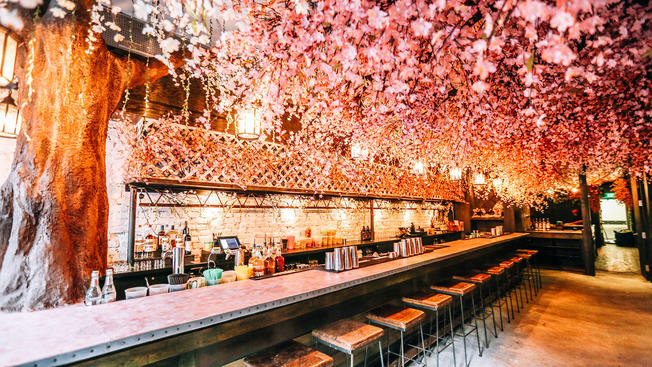 Cherry Blossom Bar, Washington DC - Bars to check out in DC this spring