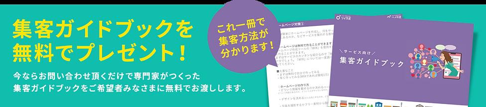 bnr_guidebook.png