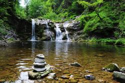 body-of-water-across-forest-949194.jpg