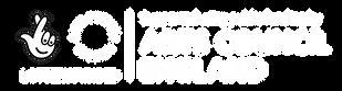 ACE logo White RGB.png
