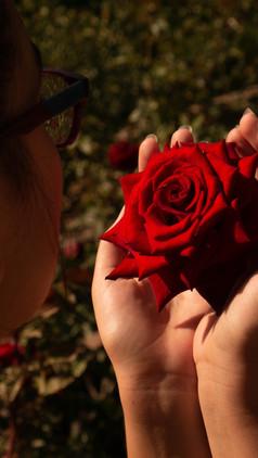 Rose Colored Perception
