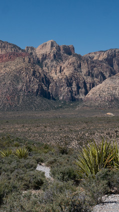 Nevada, much more than Casinos.