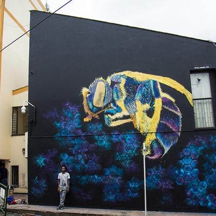 Avispa, Garzon, Colombia