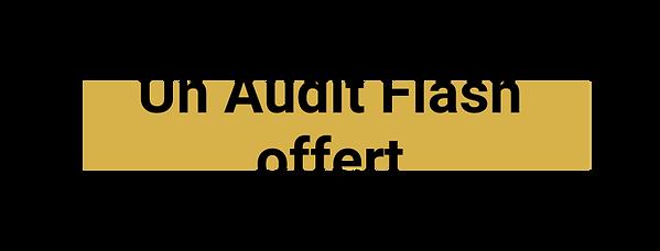 Un Audit Flash offert (1).png