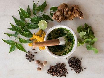 Ayurvedic herbs & spices