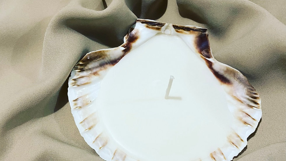 Scallop Shell Soy Wax Candle