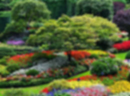 Mt. Juliet TN lawn mowing and landscaping.  Lawn mowing and landscaping in Opryland Nashville TN.  Lawn mowing services in Donelson TN and Hermitage TN lawn mowing and landscaping