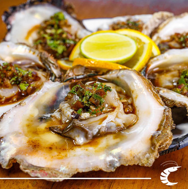 How about some delicious oysters on the half shell