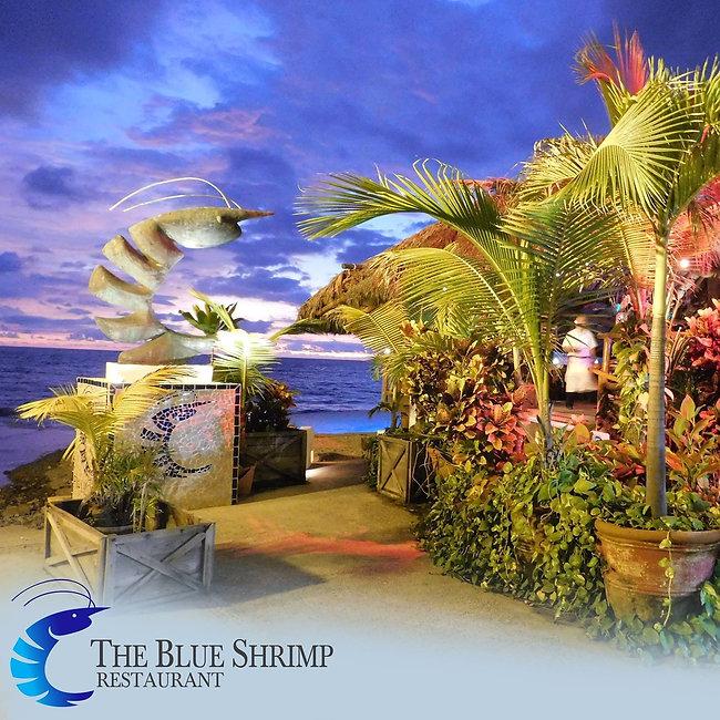 Blue Shrimp Restaurant Puerto Vallarta