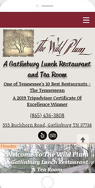 Best lunch restaurant in Gatlinburg TN with homemade food