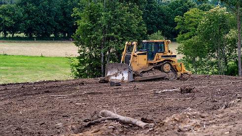 Bulldozer removing trees for cattle graz