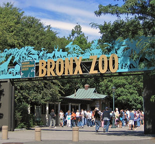 Bronx_Zoo_001.jpg