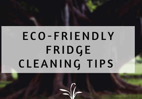 Eco-Friendly Fridge Cleaning Tips