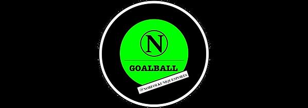 Norfolk goalball .png