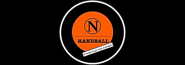 Norfolk handball .png