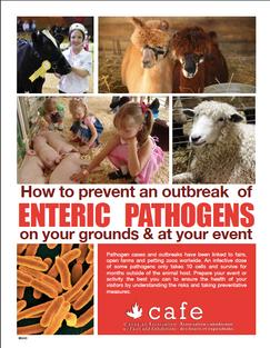 Enteric Pathogens