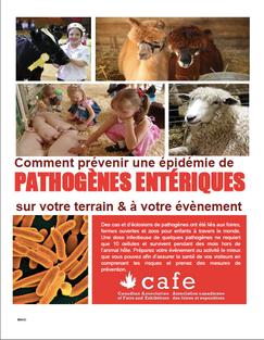 Pathogenes Enteriques