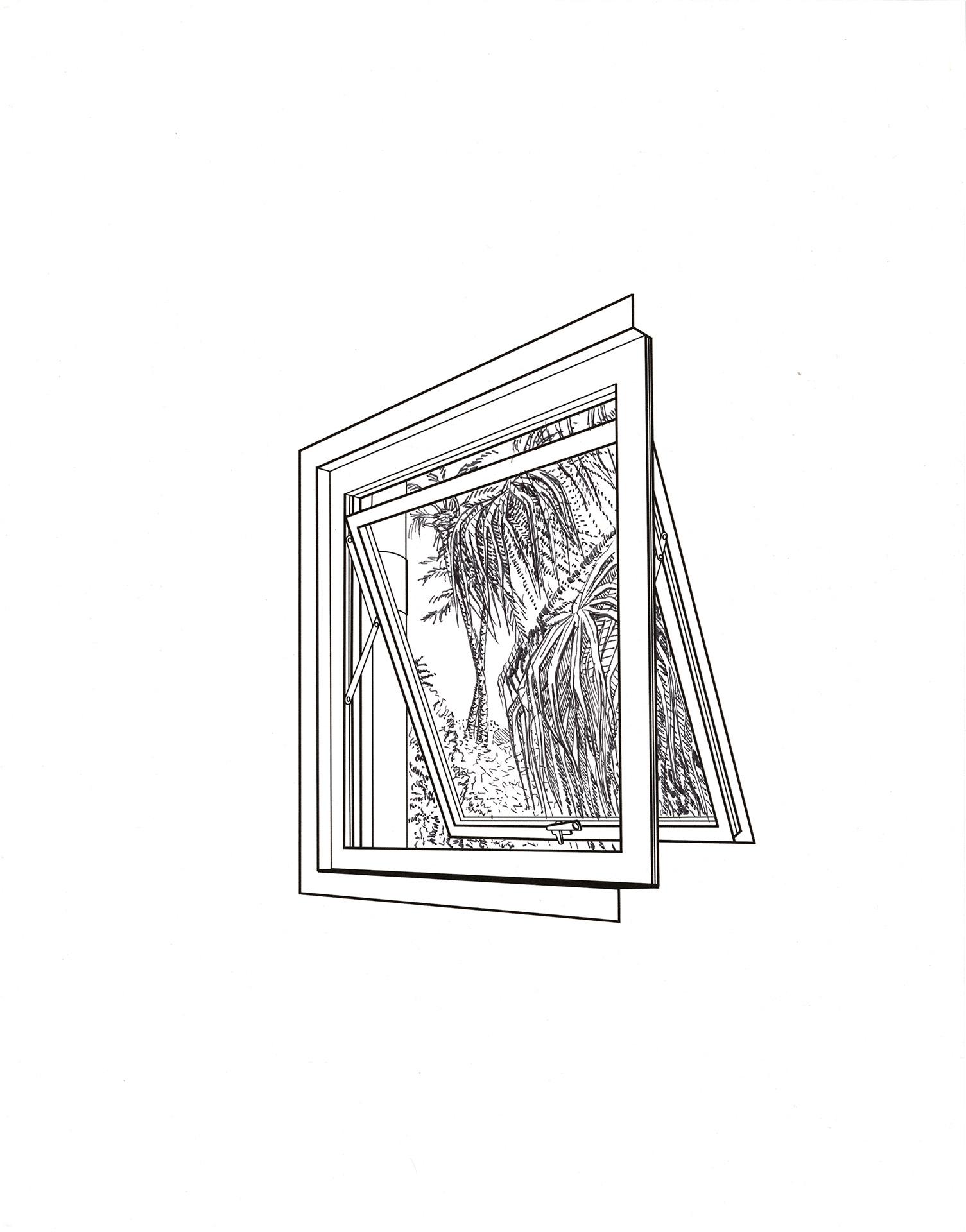 Window Drawing 3.12.18