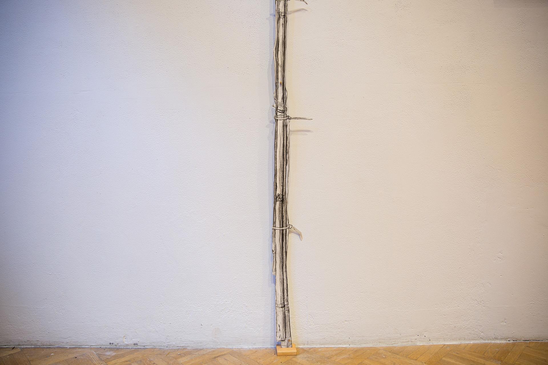 Bamboo Measuring Device