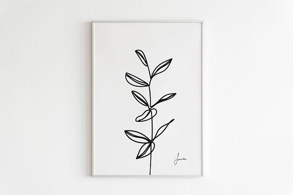 Botanic Ilustration Print in White Framed