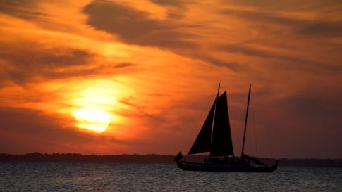 NY0009r SU Hamptons.jpg