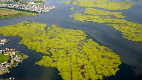 NY0008 Long Island.jpg