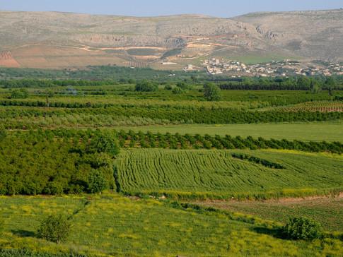 sy003 Landschaft bei Ain Dara.jpg