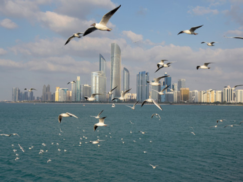 EM0008 Abu Dhabi.jpg