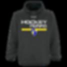 hoodies2.png
