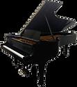1999-solo-piano-steinway-black-d-piano.p