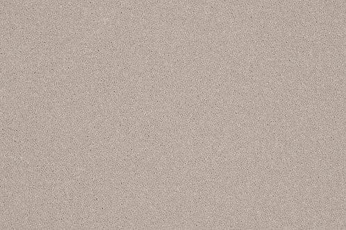 Elegance - Ammonite 1102