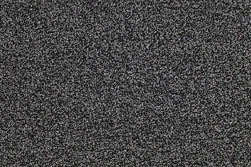 Trident Highlights - Black Diamond 585