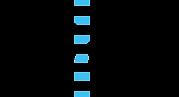 sjcf logo.png