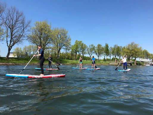 Stand Up Paddle Boarding ( SUP)