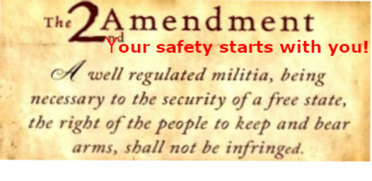 2A 2ndamendment2 b   2 w Your Safety   .
