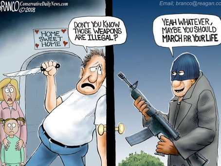 Hilarious Cartoon Shows EXACTLY What Gun Control Does