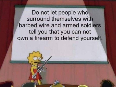 Politicians Surround by Armed Soldiers Don't Want You to have Firearms to Defend Yourself
