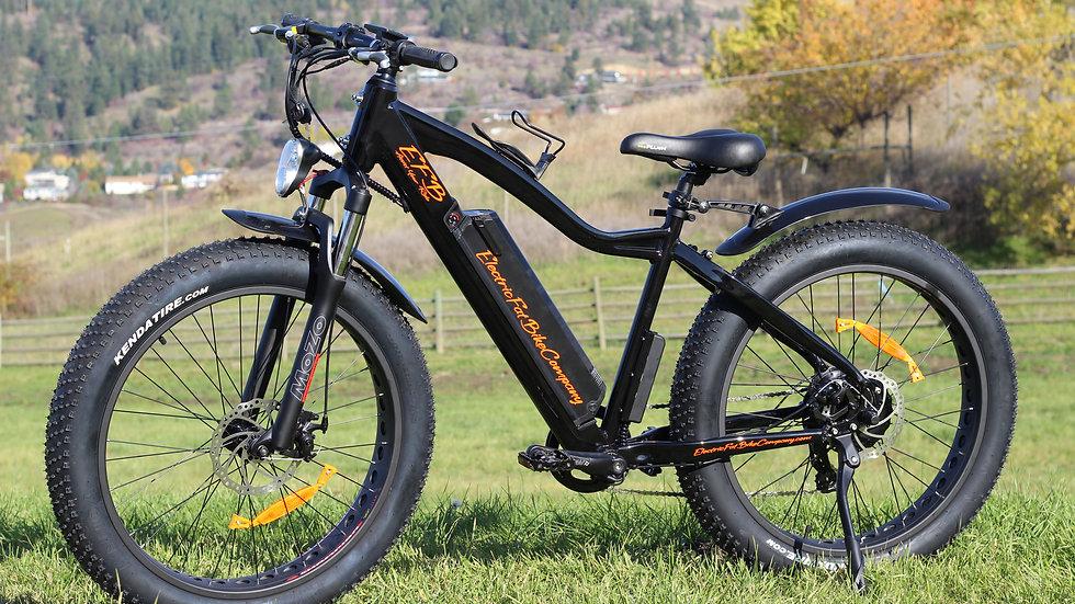 EFB500 - $2,000