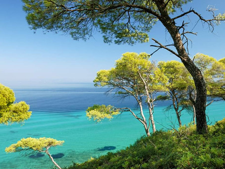 GREEN AND BLUE  -  the colors of Sporades Islands and Halkidiki